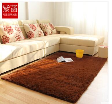 加厚可机洗长毛绒客厅茶几地毯满铺卧室床边榻榻米地毯