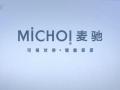深圳市麦驰安防技术有限公司 (17播放)
