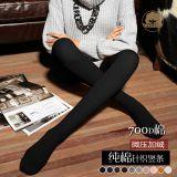 秋冬必备 高端纯棉针织 细条纹 微压精致 连裤袜 打底裤