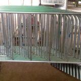 深圳304不锈钢铁马护栏价格 会展中心活动现场安全隔离护栏