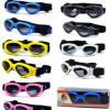 彭博BP 宠物眼镜 宠物太阳镜现货批发 多种颜色选择 定制LOGO