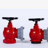 厂家直销 天兴 室内消火栓 DN50 DN65 消防栓