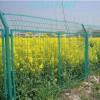 路边双边丝护栏网 道路旁护栏网现货批发 绿色护栏网供应