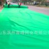 盖土网 防尘网建筑盖土网防尘网密目网施工安全网 工地防尘网