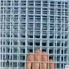 镀锌网片建筑网格,狗笼子鸡舍窝防锈网镀锌网格片,铁丝网现货