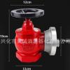 厂家直销 室内消火栓 SN65消防栓 旋转栓 减压栓 旋转消火栓