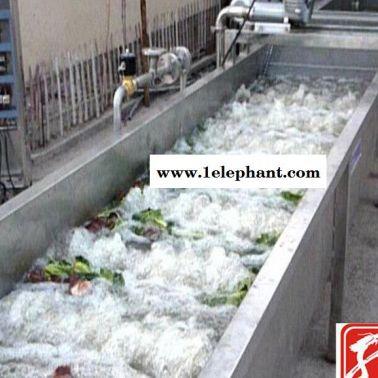 山东诸城 高压气泡清洗机 蔬菜清洗灭菌流水线  价格查询