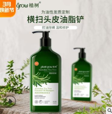 洗护用品祛螨止痒澳洲茶树精油洗发水 清爽控油植物精华洗发露